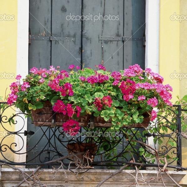 Купить вазоны для цветов снаружи балкона..