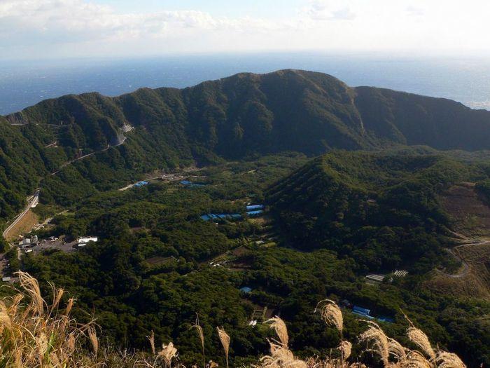 японский остров аогасима фото 6 (700x525, 66Kb)