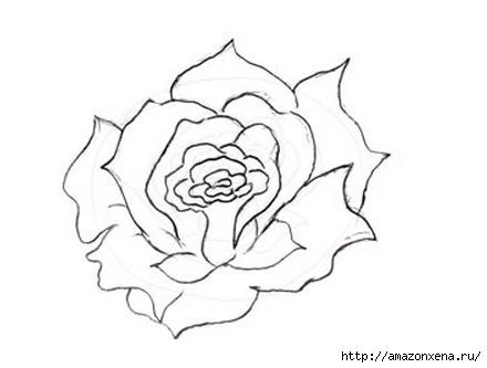 Как нарисовать розу (7) (440x333, 45Kb)