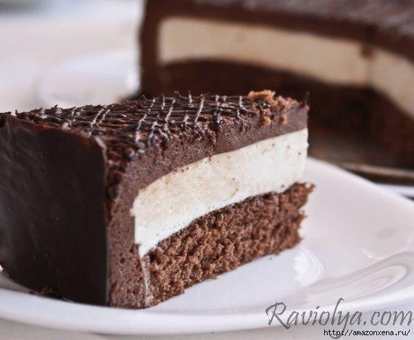 торт двойное суфле (2) (604x496, 117Kb)