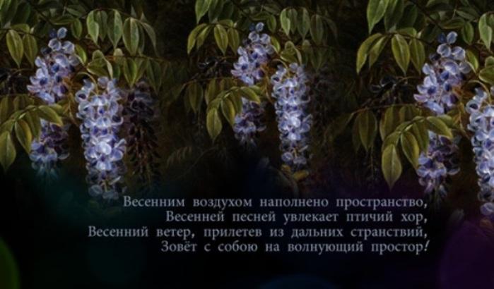 99914494_Unbenannt1 (700x410, 81Kb)