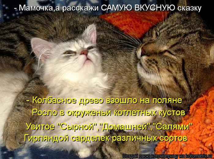 kotomatritsa_w (700x522, 90Kb)