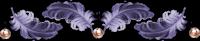 Plume1 (200x41, 15Kb)