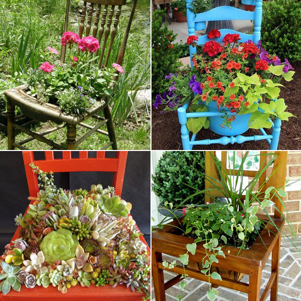 planting-flowers-in-chairs (600x600, 473Kb)