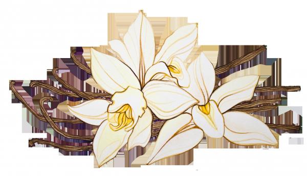 10116_600 (600x345, 266Kb)
