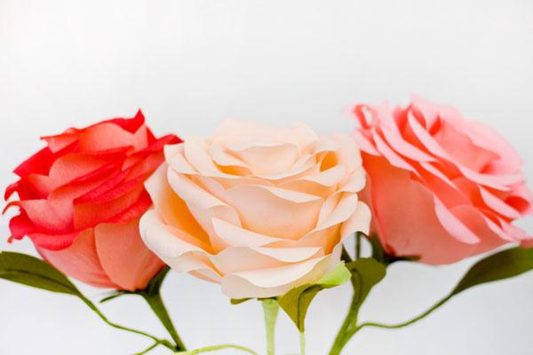 гигантские розы из гофробумаги (30) (600x400, 37Kb)