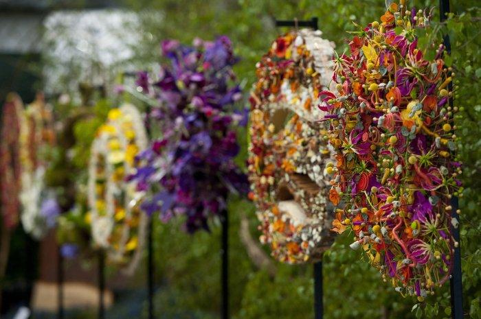 Chelsea Flower Show 2013 7 (700x465, 78Kb)