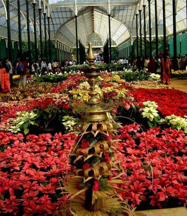 Chelsea Flower Show 2013 12 (605x700, 88Kb)