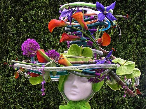 Chelsea Flower Show 2013 13 (500x374, 210Kb)