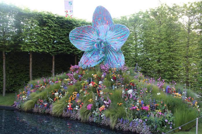 Chelsea Flower Show 2013 16 (700x466, 79Kb)