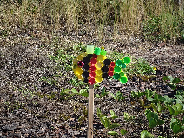 getImage (12) (640x480, 183Kb)
