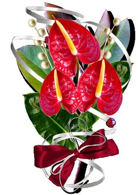 kvetiny_cervene (56) (283x400, 204Kb)