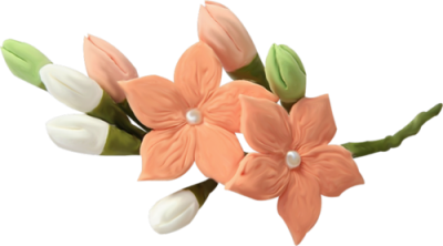kvetiny_cervene (102) (400x222, 106Kb)