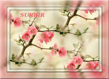 4674007_tuxpi_com_1369568918 (366x266, 57Kb)