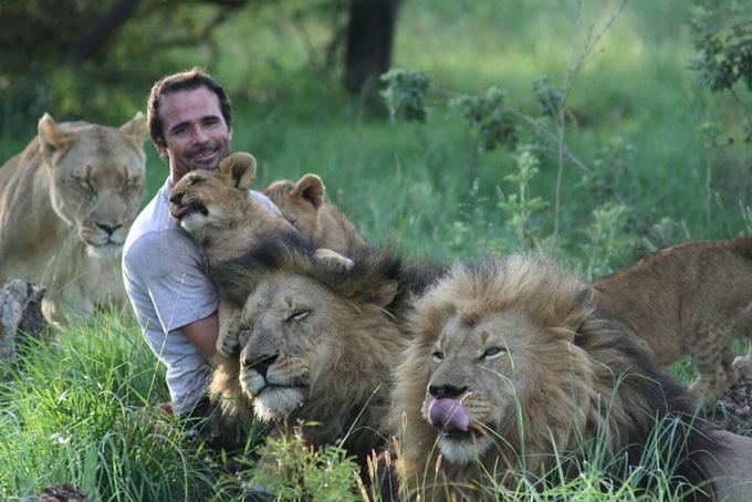 Kevin Richardson львы фото 7 (680x454, 128Kb)