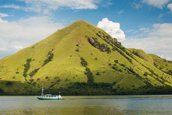 Остров Ринча (Индонезия) (604x402, 57Kb)