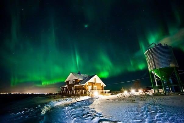 Северное сияние в Архангельске, Россия (604x402, 28Kb)