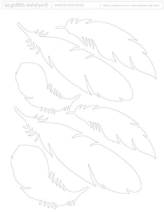 шаблон перьев (540x700, 42Kb)
