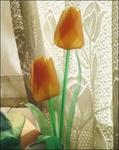 Превью tulipa (350x441, 131Kb)