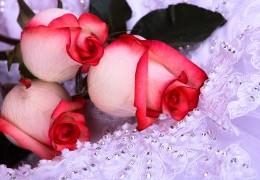 flowers-1100422017 (260x180, 18Kb)