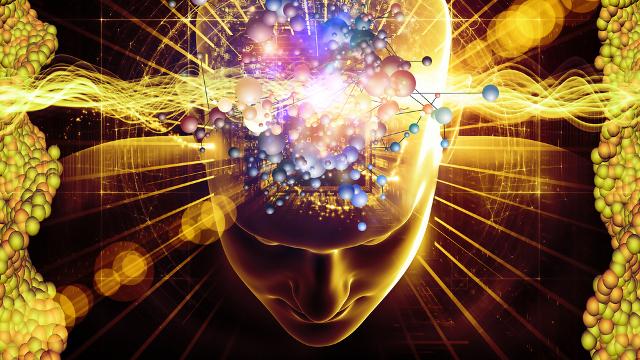 brain (640x360, 398Kb)