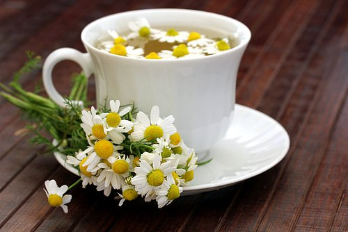 ромашковый чай (500x334, 34Kb)