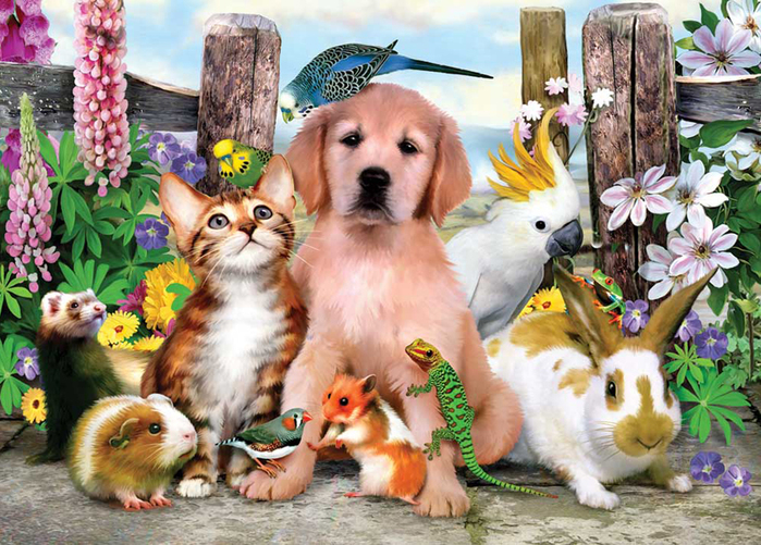 cats_and_dogs_17 (700x501, 410Kb)
