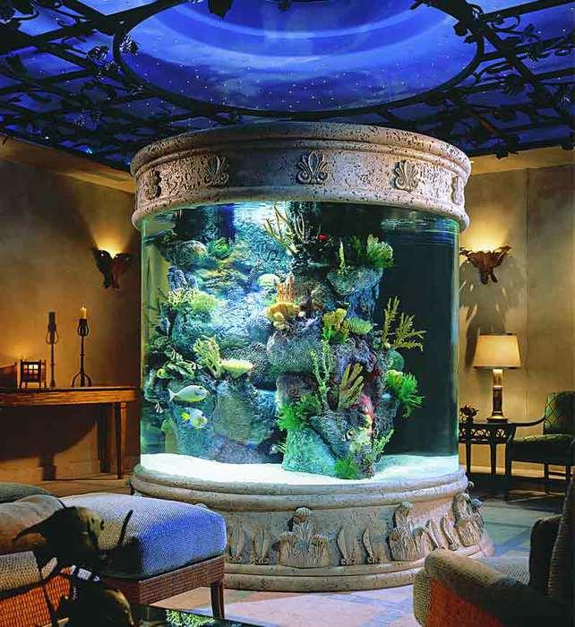 3368205_aquarium600k (642x700, 74Kb)