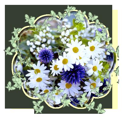 АВА_РОМАШКИ (400x400, 261Kb)