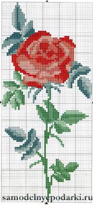 роза7 (182x400, 30Kb)
