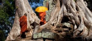 Delta-Mekonga-i-Kambodzha1-300x135 (300x135, 21Kb)