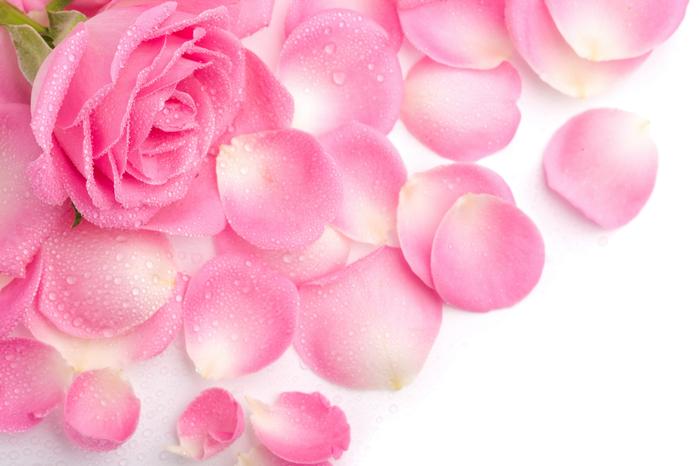 1289630653_flower027 (700x466, 297Kb)