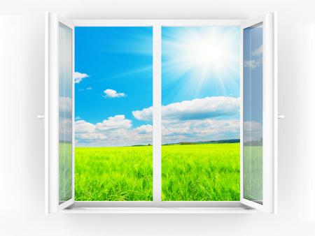 Чем чище окна, тем ярче солнце.