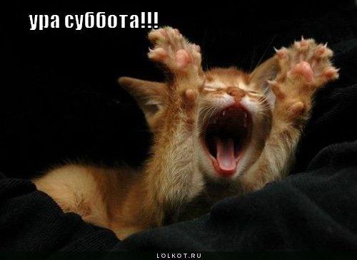 3821971_sybbota_1_ (500x365, 25Kb)
