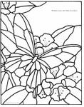 Превью butterflyp (551x700, 102Kb)