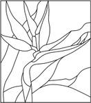 ������ 4birdofparadise (616x700, 65Kb)