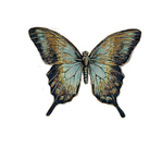 ������ 1278200112_55_FT0_chad-barrett-butterfly-etching (289x258, 62Kb)