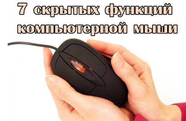 3650729_original (604x392, 40Kb)