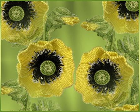 Желтые-маки (450x361, 322Kb)