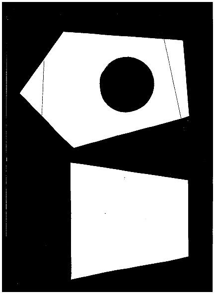 Домик для птички из картона, палочек от мороженого, с мозаикой из яичной скорлупы (3) (433x593, 21Kb)