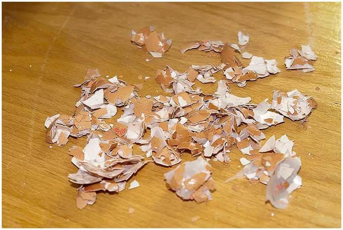 Домик для птички из картона, палочек от мороженого, с мозаикой из яичной скорлупы (20) (700x469, 61Kb)