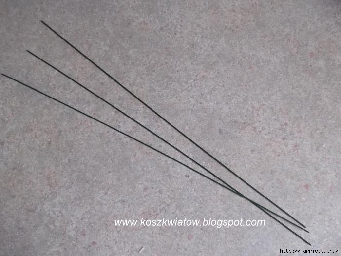 DSCF2909 (700x525, 250Kb)