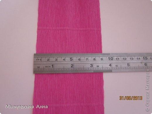 бутоны роз из гофрированной бумаги. мастер-класс (2) (520x390, 26Kb)