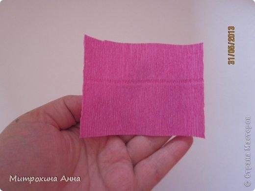 бутоны роз из гофрированной бумаги. мастер-класс (4) (520x390, 21Kb)