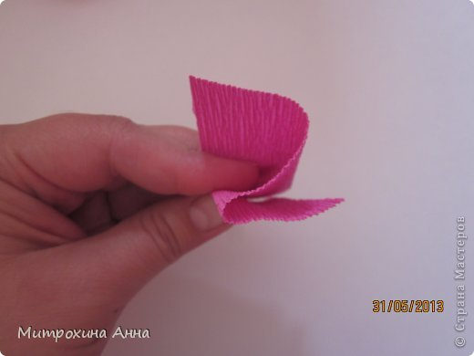 бутоны роз из гофрированной бумаги. мастер-класс (10) (520x390, 16Kb)