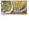 Превью 586 (479x700, 170Kb)