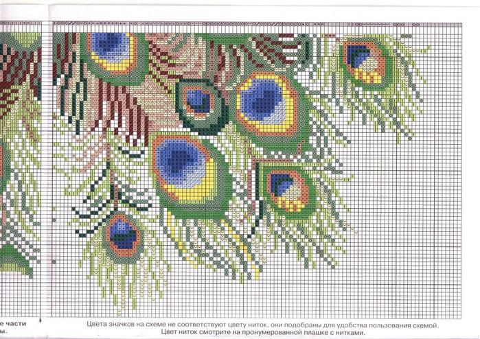 Схема вышивки павлины