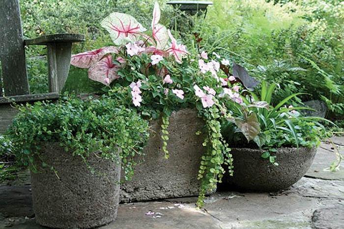 Bolas decorativas feitas de cimento para o jardim.  Idéias e master class (10) (700x466, 129KB)