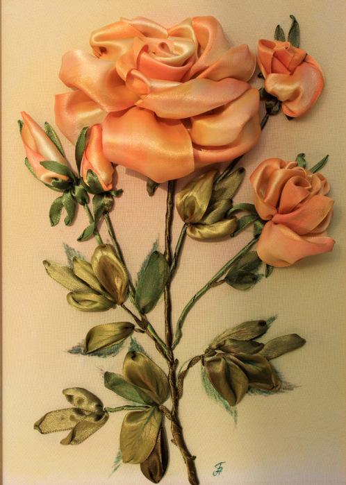 веточка розы (498x700, 135Kb)