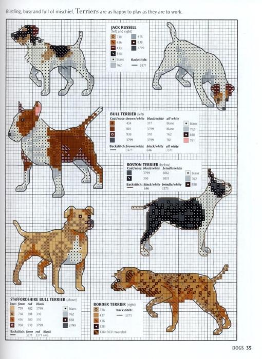 Собаки из бисера схемы.